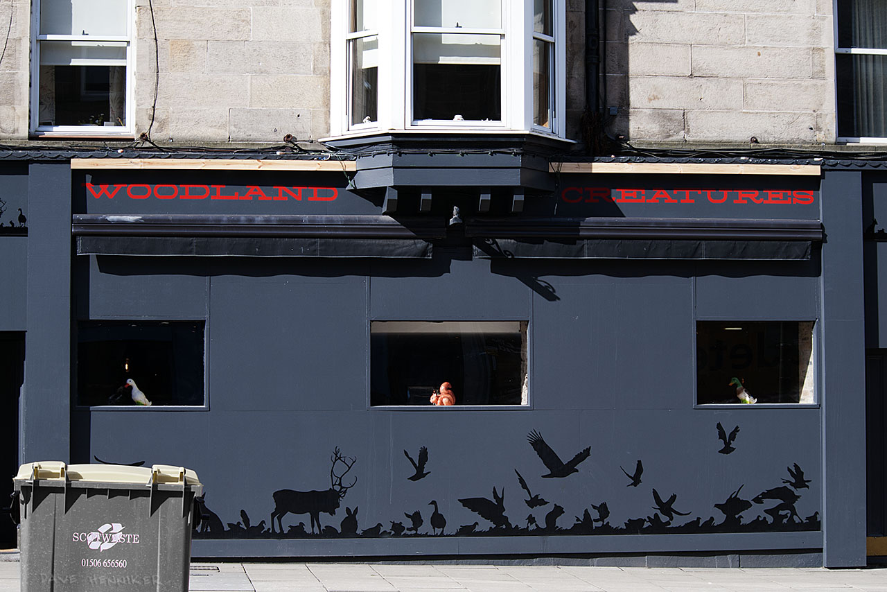 This most unusual frontage for Leith Walk belongs to WOODLAND CREATURES. More information from Greener Leith.