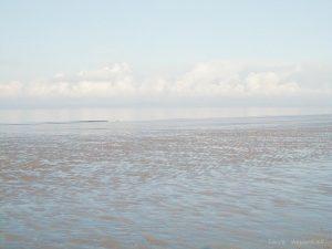 misty_shore
