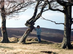 lammermuir-jane-tree