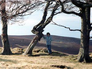lammermuir-jane-tree