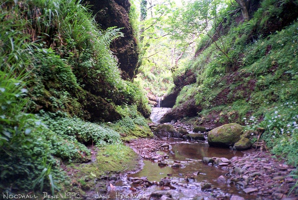 woodhalldene2
