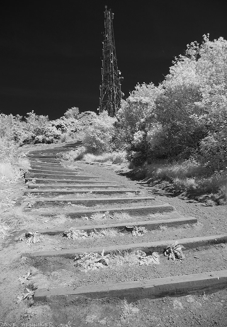 blackford_hill_ir26