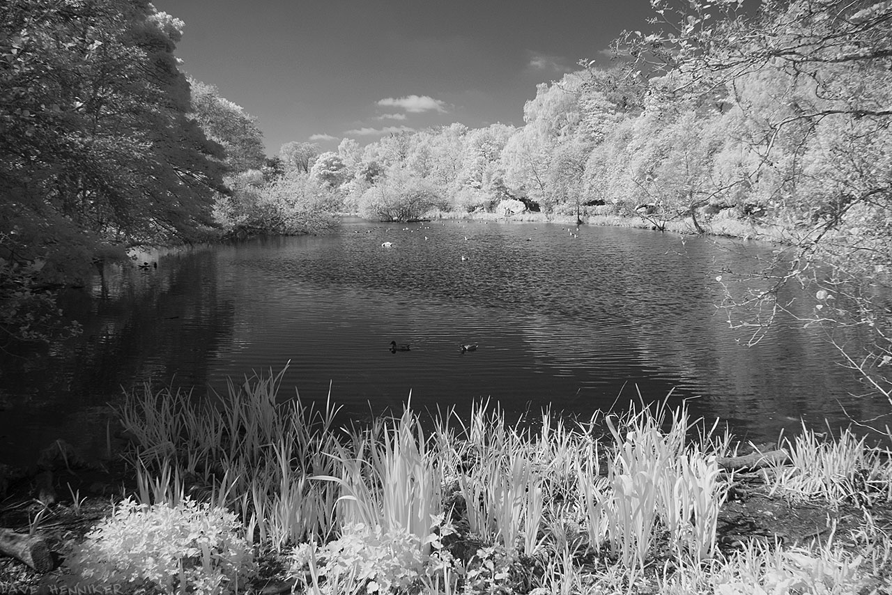blackford_pond07ir