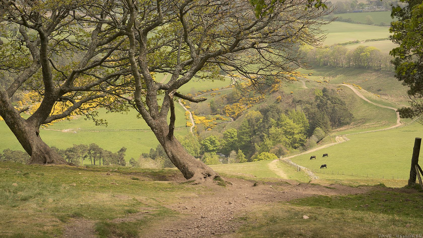 turnhouse_hill_descent2