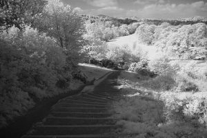 blackford_hill_ir29