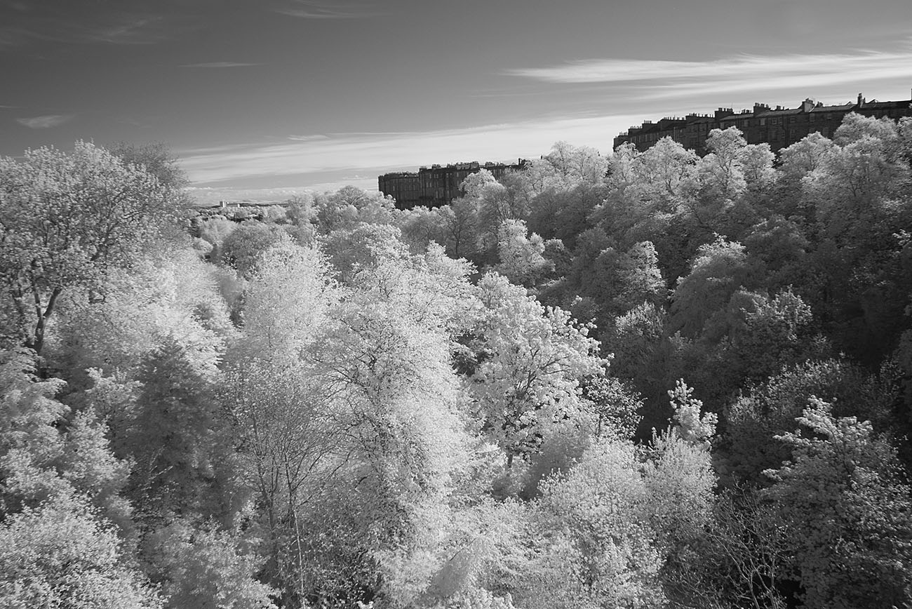 dean-bridge31viewIR