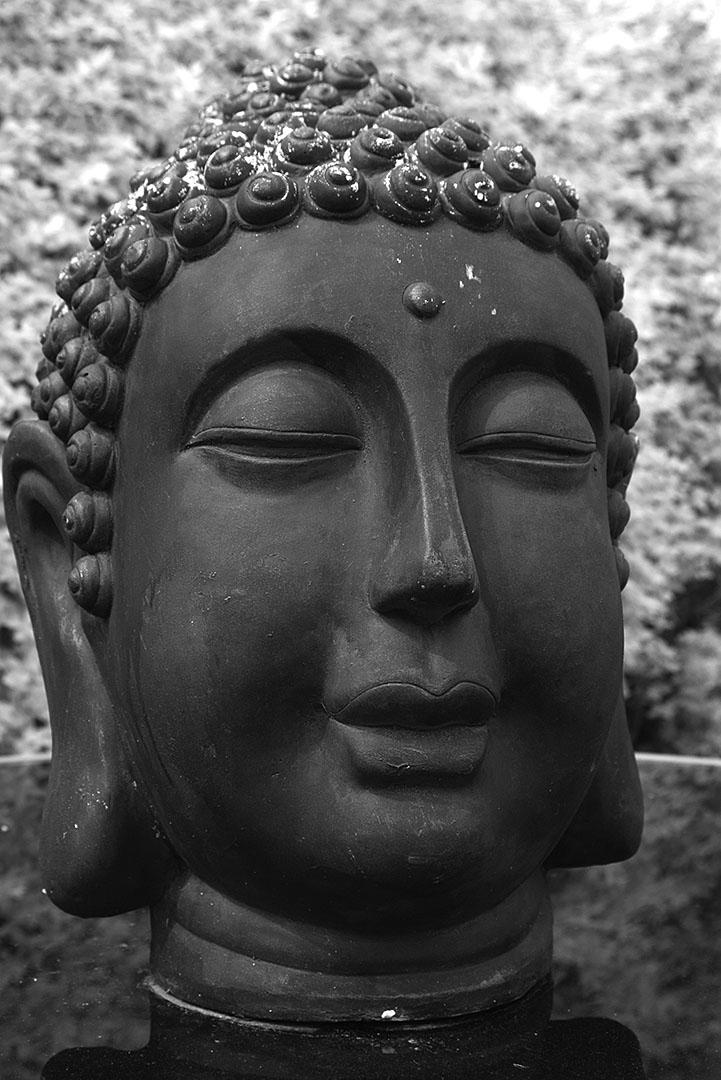 Buddha 1ir