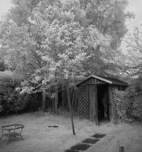 garden01ir