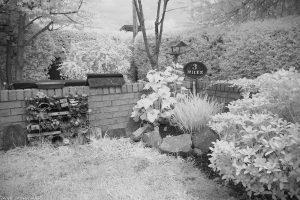 garden02ir