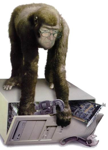 monkey_tech1