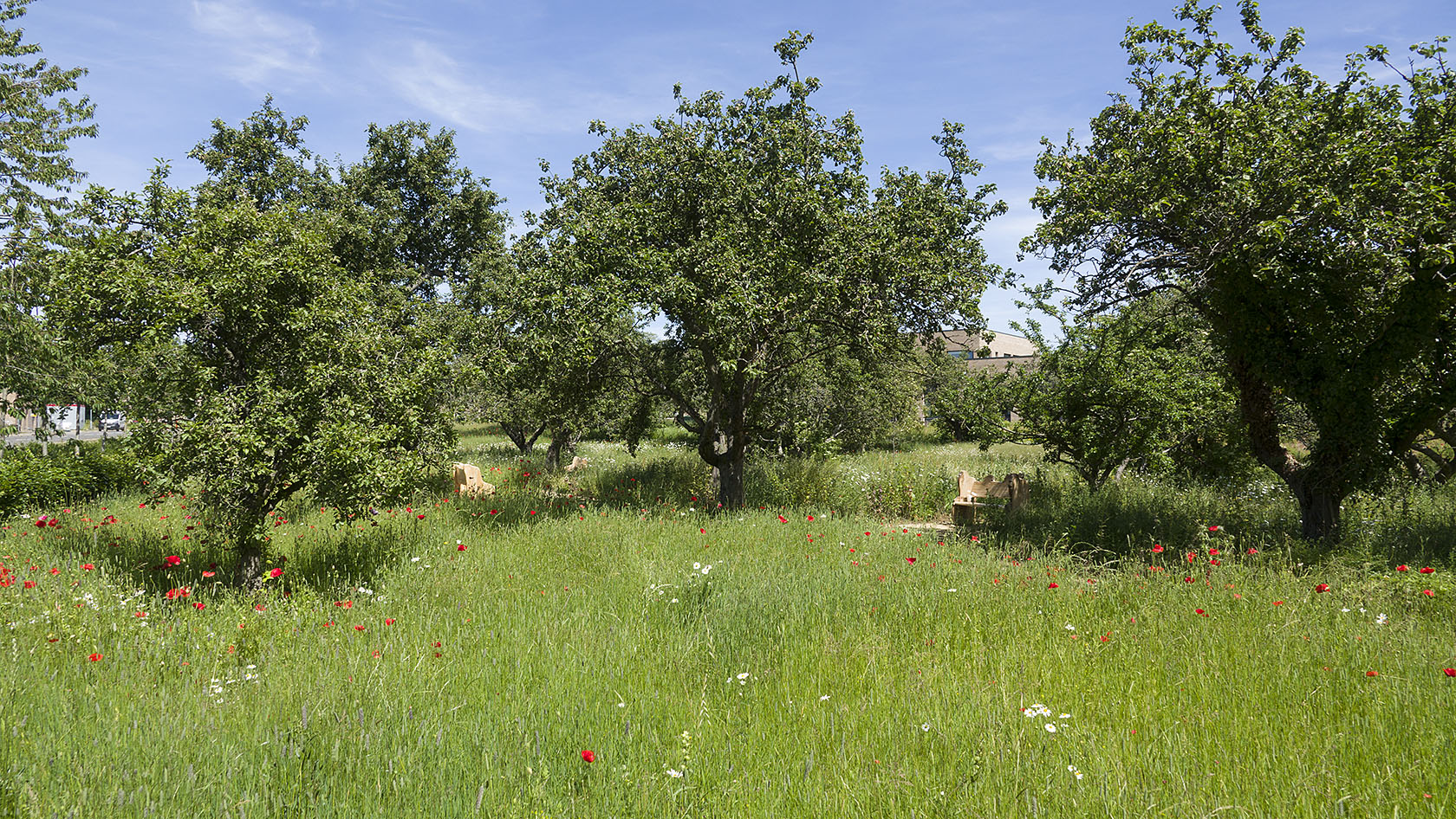 Orchard2018(b)