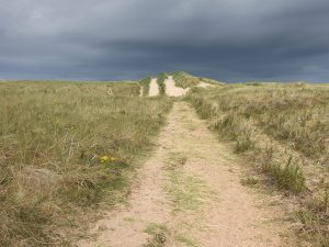 aberlady_bay_path_end24