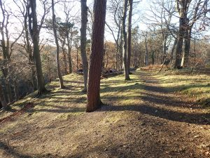 blackford_glen20181113(a)