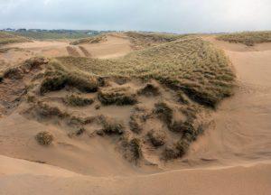 12 Eoropie Dunes