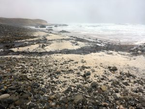 45 Swainbost Beach