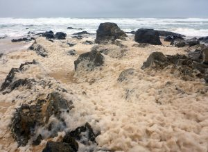 76 Foam & rocks Swainbost shore