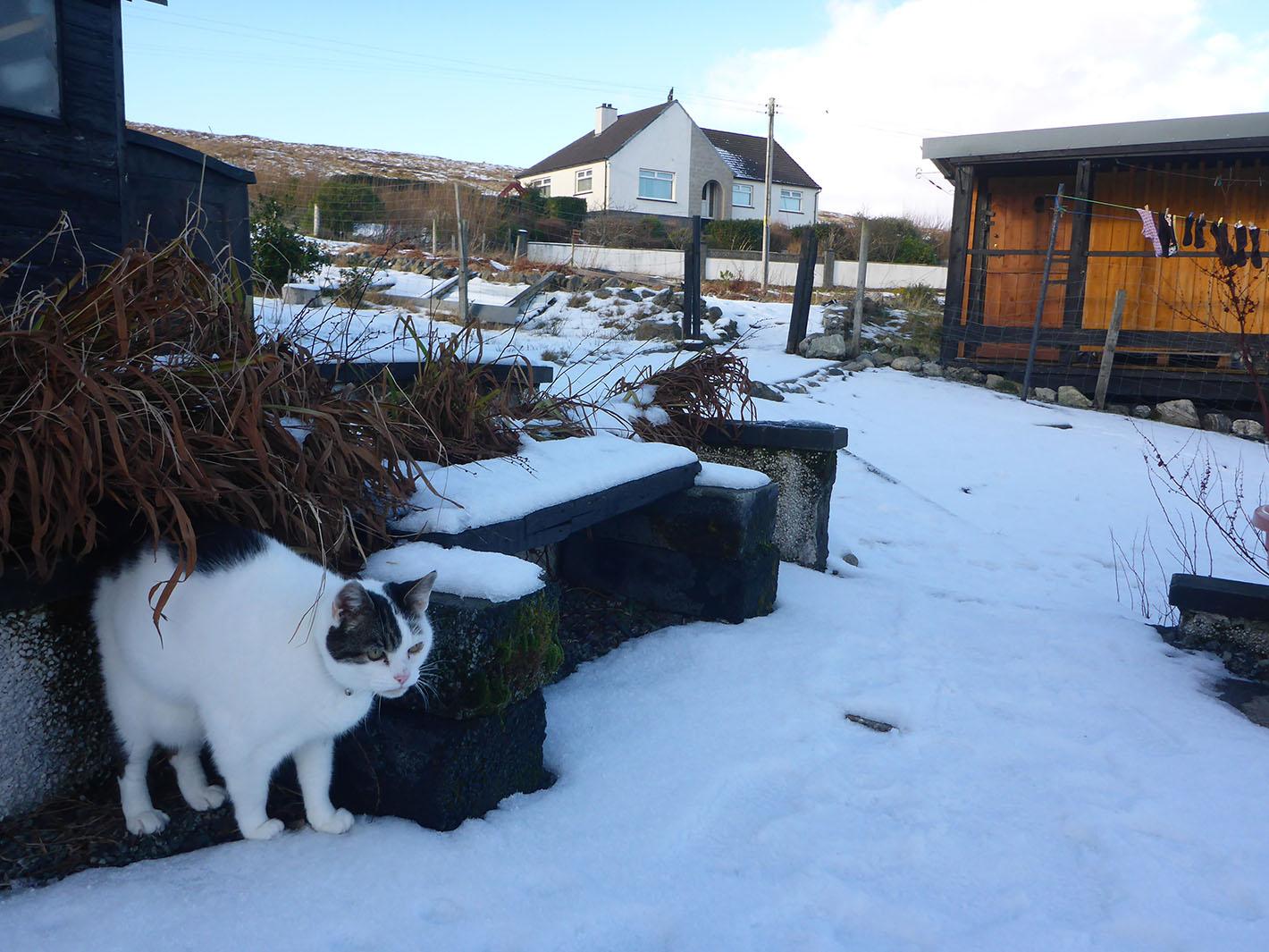 18 Ray in garden