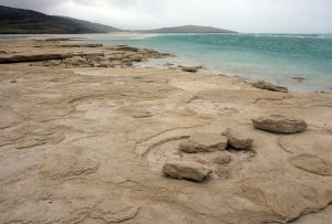 59 Sand boulder shore