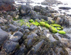 83 Green stones