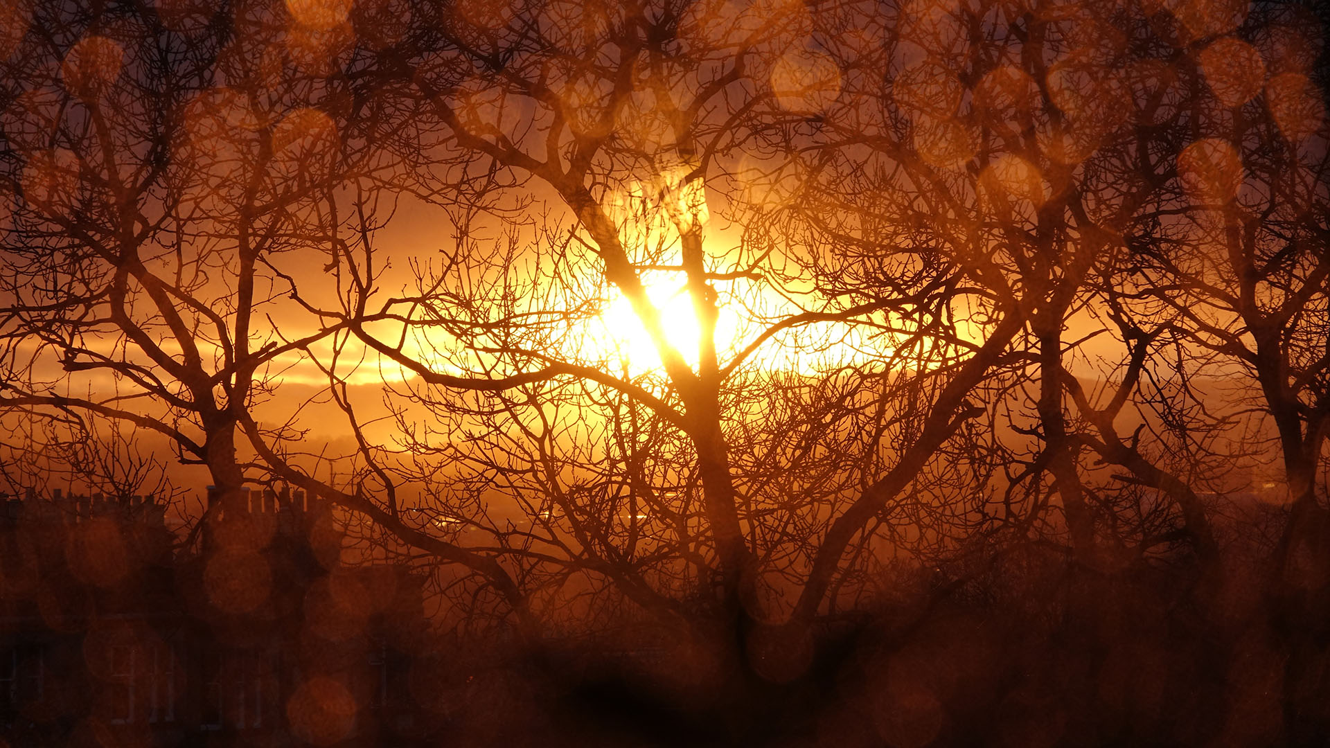 Sunset20190316
