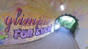 tunnel(c)