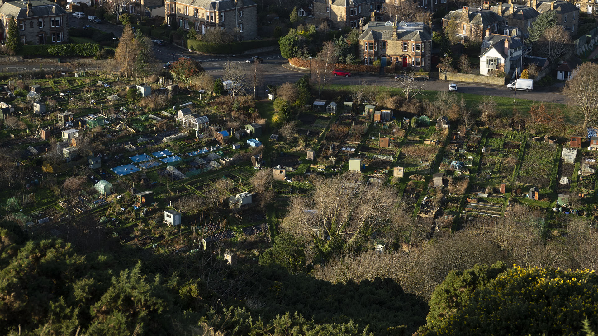 Allotments 20191209b