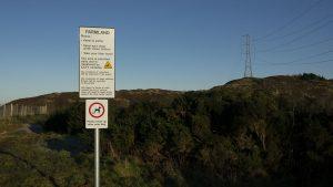 Torphin path 03