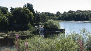 Duddingston Loch 02