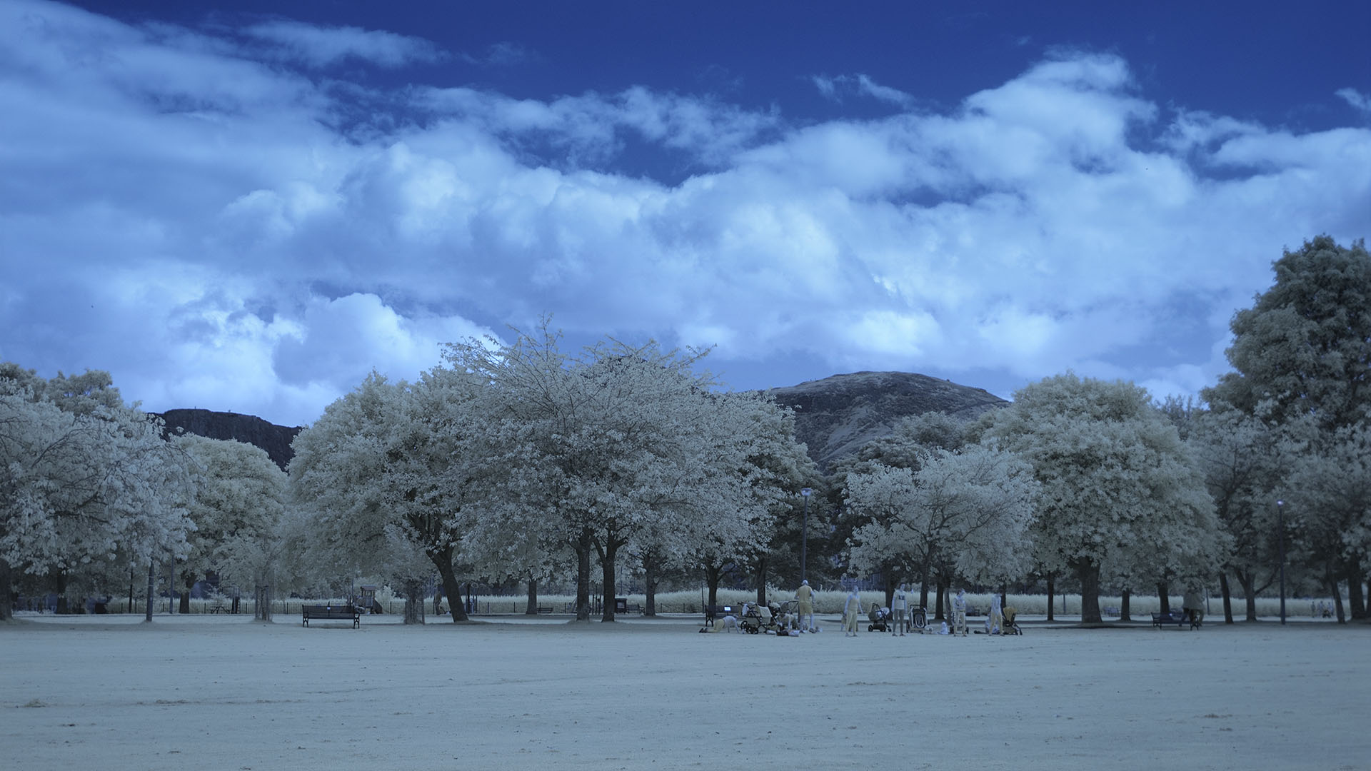 Meadows 02 IR 665NM