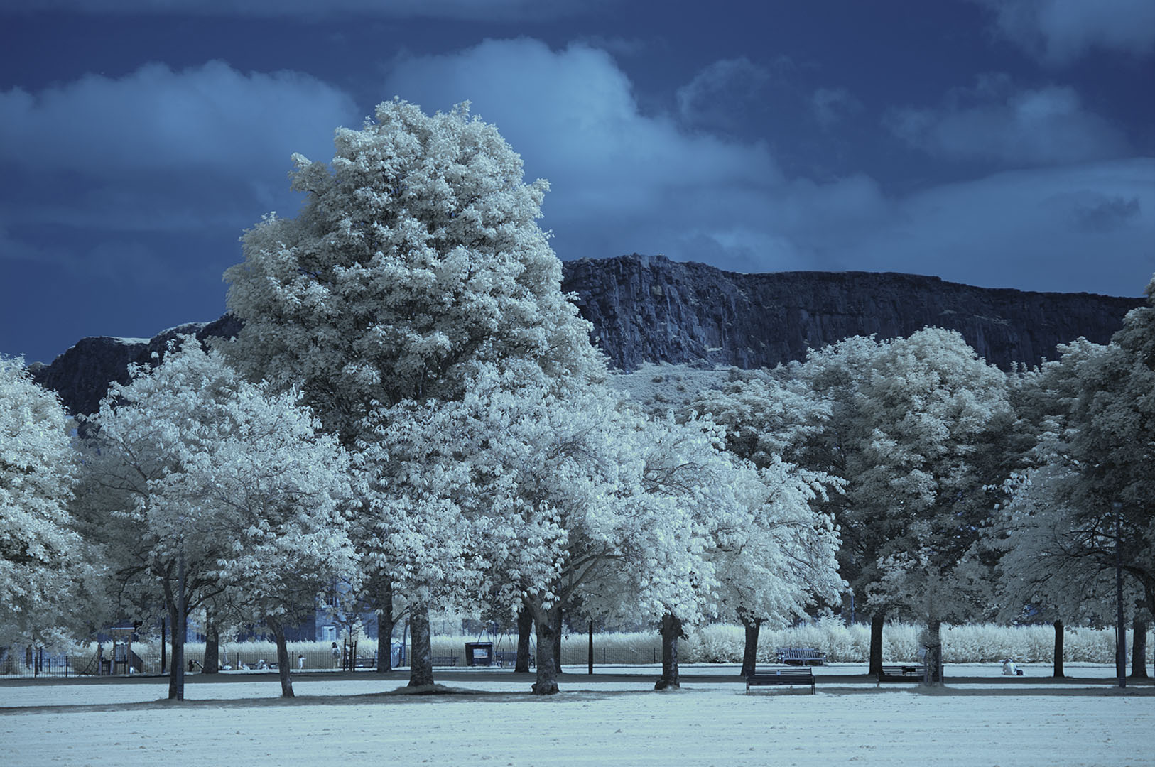 Meadows 07 IR 665NM