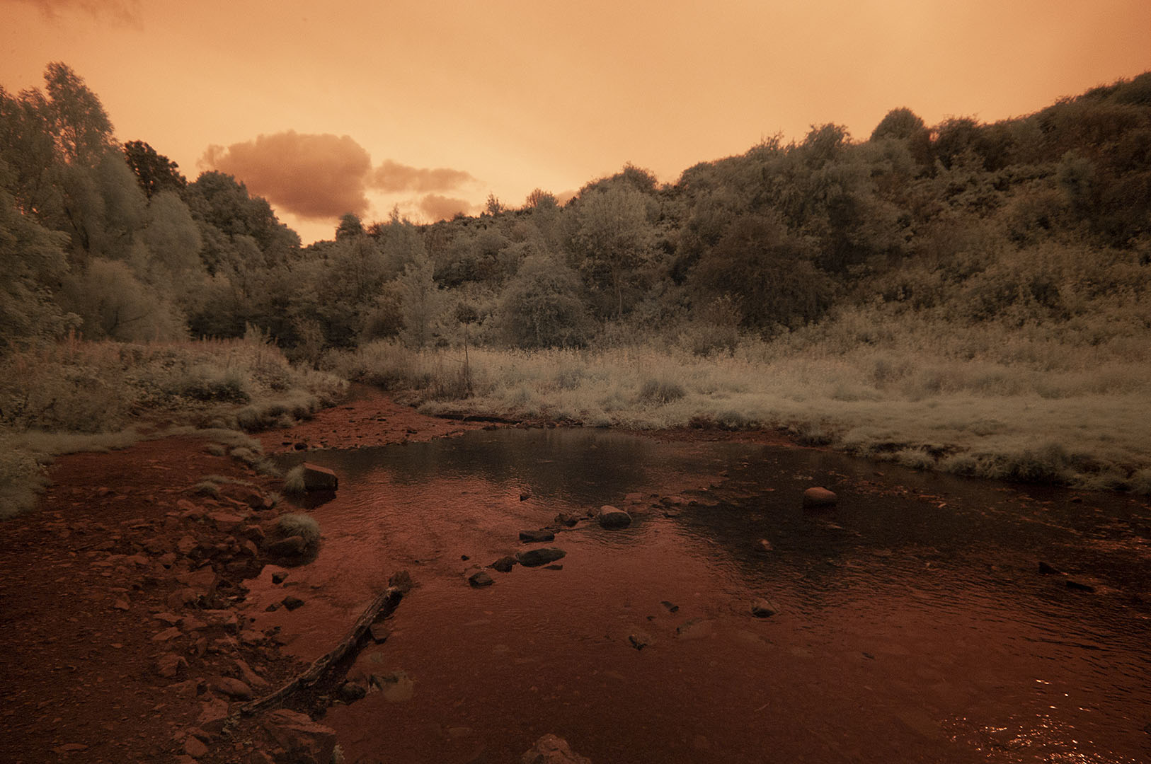 Blackford-Glen-path2020ir665(c)
