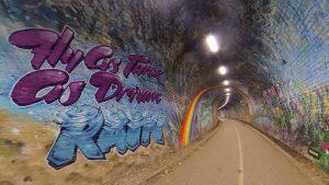 Colinton Tunnel 2020(20)