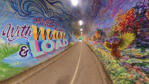 Colinton Tunnel 2020(25)