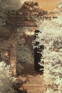 JL tomb 09 IR665