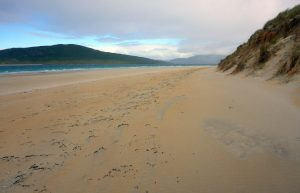 35 Luskentyre dunes & Taransay